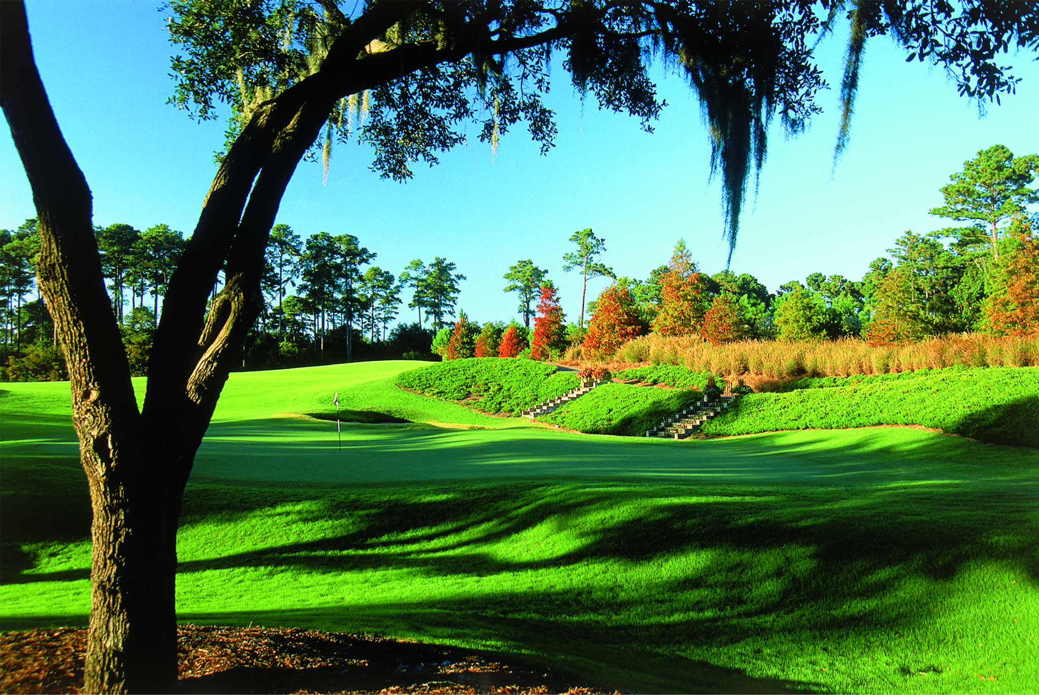 caledonia_golf_and_fish_club_cover_picture